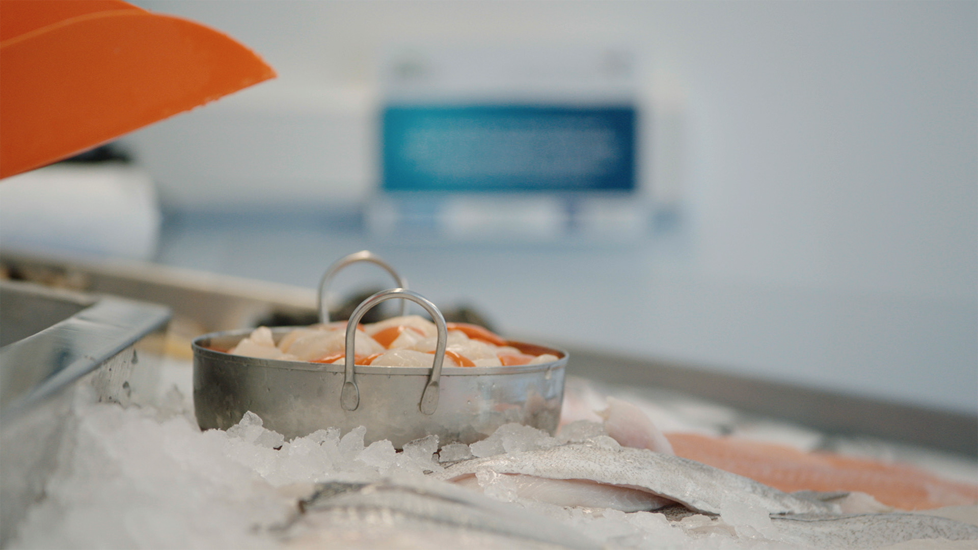 BIM social media campaign, seafood display